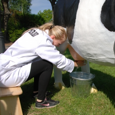 MILKING SIMULATOR