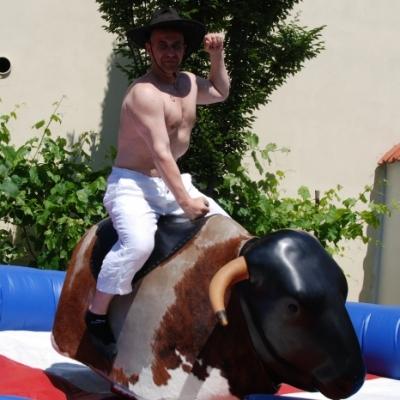 Rodeo býk